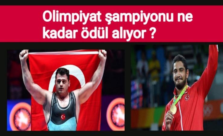 Dünya güreş şampiyonu ödülü nekadar