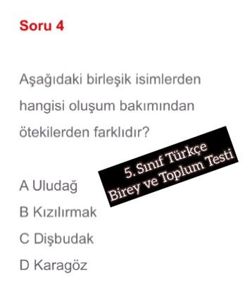 5. Sınıf Türkçe Birey ve Toplum Testi