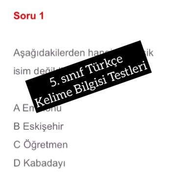 5. sınıf Türkçe Kelime Bilgisi Testleri