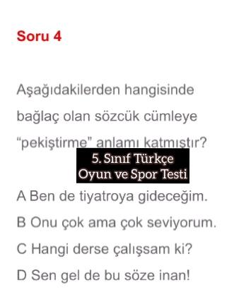 5. Sınıf Türkçe Oyun ve Spor Testi