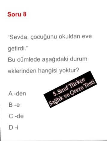 5. Sınıf Türkçe Sağlık ve Çevre Testi