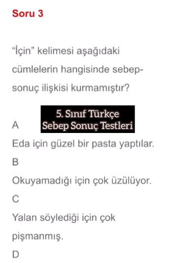 5. Sınıf Türkçe Sebep Sonuç Testleri