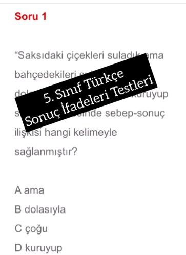 5. Sınıf Türkçe Sonuç İfadeleri Testleri