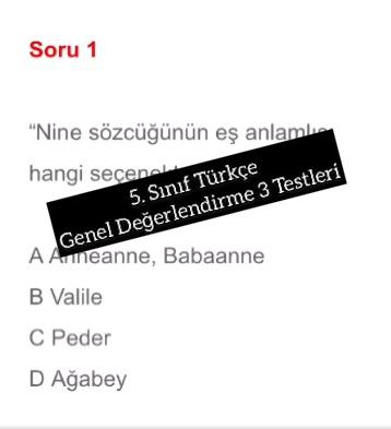 5. Sınıf Türkçe Genel Değerlendirme 3 Testleri