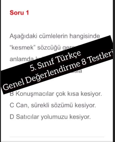 5. Sınıf Türkçe Genel Değerlendirme 8 Testleri