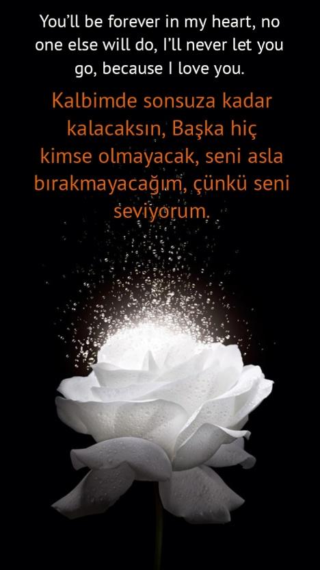 Aşk şiirleri ingilizce Türkçe açıklamalı