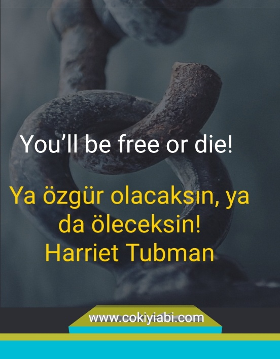 Ya özgür kalacaksın yada öleceksin ingilizce si