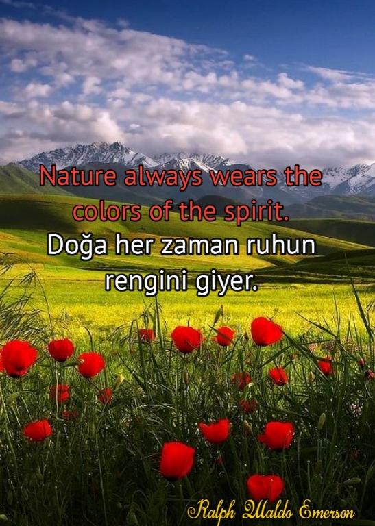 Doğa ile ilgili GÜZEL sözler ingilizce Türkçe