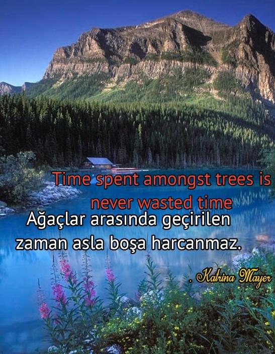 ingilizce Türkçe Doğa ile ilgili Anlamlı Sözler