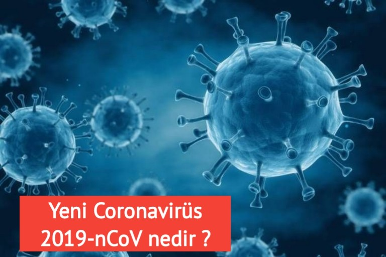 yeni Coronavirüs 2019-nCoV nedir nasıl bulaşır