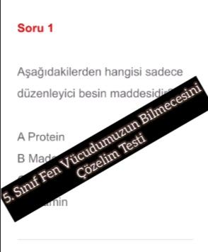 5. Sınıf Fen Vücudumuzun Bilmecesini Çözelim Testi