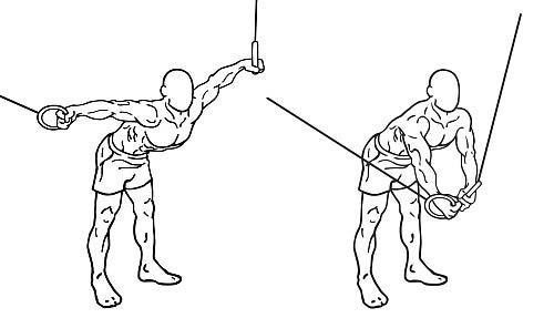 göğüs kasları geliştirme hareketleri