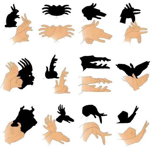 Gölge oyunu el hareketleri resimleri