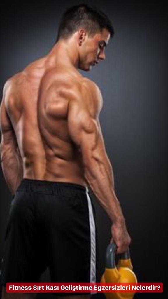 Fitness Sırt Kası Geliştirme Hareketleri Nelerdir ?