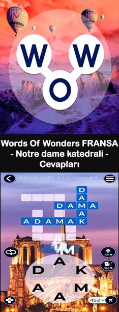 Notre Dame Katedrali 1.Bölüm Cevapları (Wow- Kelime Bulmaca Oyunu )
