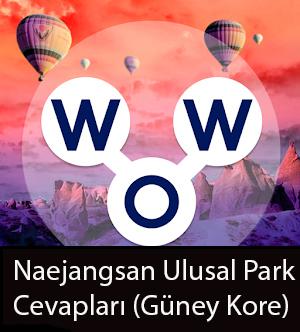 Naejangsan Ulusal Park