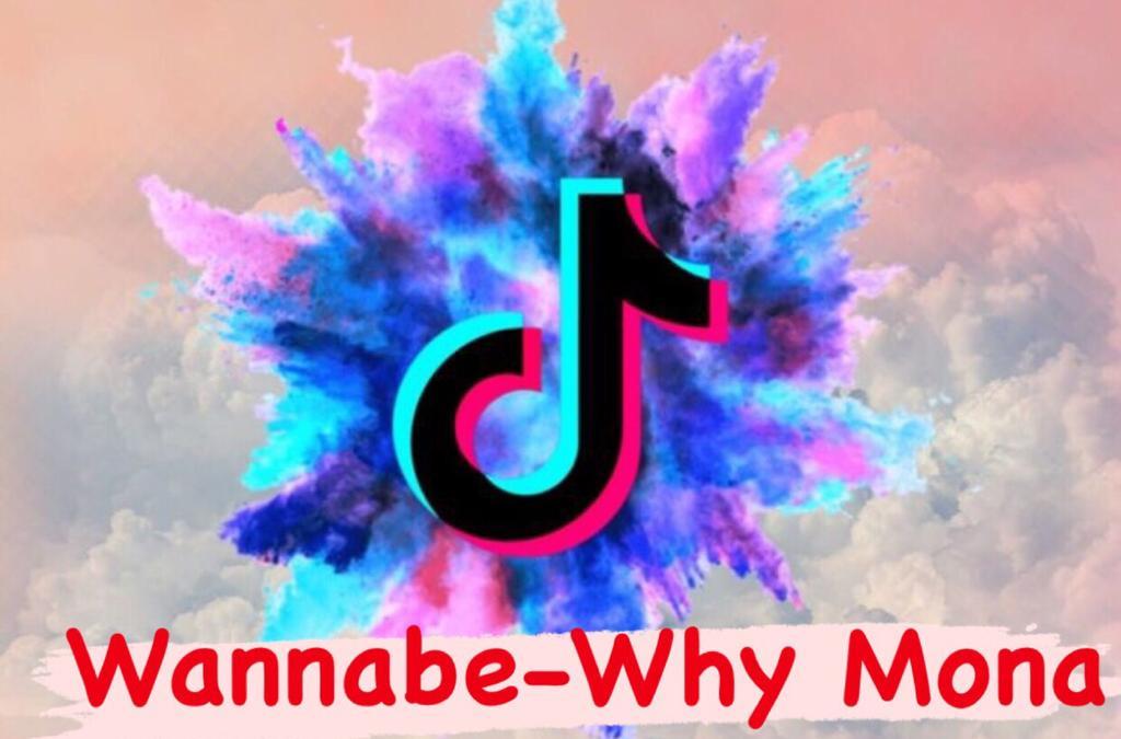 Wannabe-Why Mona TikTok Şarkı Sözleri