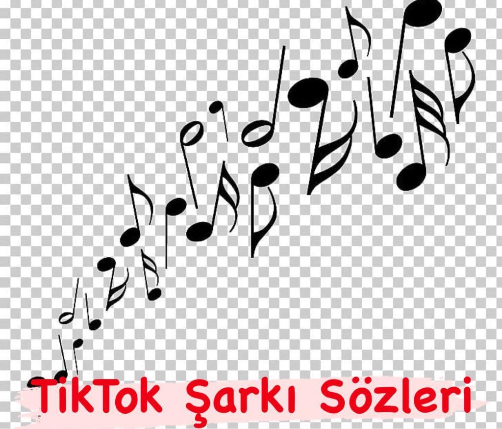TikTok Hareketli Şarkılar