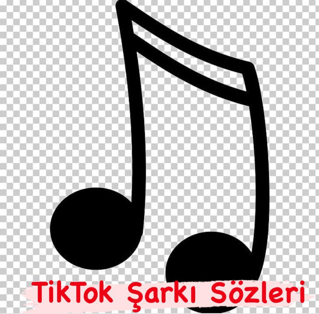 Norm Ender-Mekanın Sahibi TikTok Şarkı Sözleri