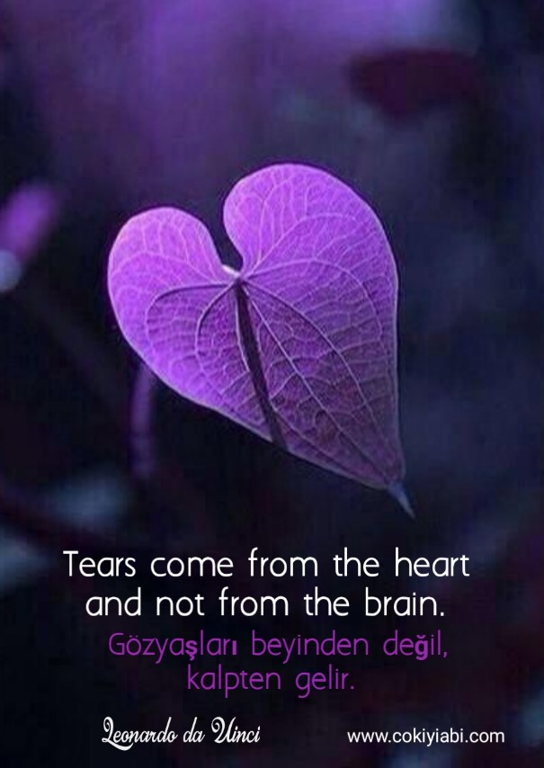 Kalp ile ilgili Sözler İngilizce -Türkçe
