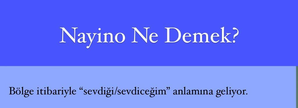 Nayino Ne Demek?