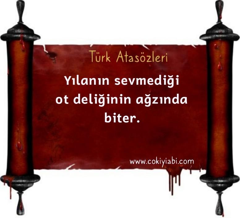 En güzel Türk Atasözleri
