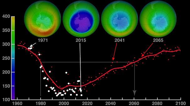 Ozon Tabakasının İncelmesine Neden Olan Maddeler Nelerdir, Ozon Tabakasının Azalmasının Ekolojik Dengeye Etkileri Nelerdir?