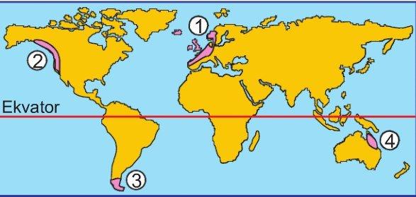 Okyanusal İklim Nedir, Okyanusal İklim Özellikleri Nelerdir?