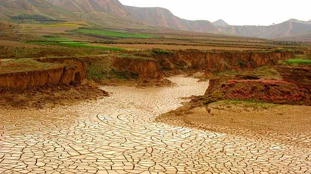 Step İklimi Özellikleri Nelerdir?