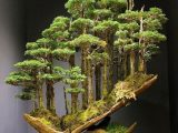 Ağaç Yaşken Eğilir İle İlgili Kompozisyon Örnekleri Nelerdir?
